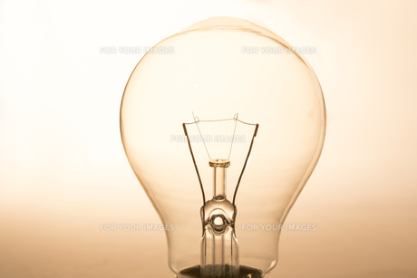 Close up of clear light bulbの写真素材 [FYI00488291]