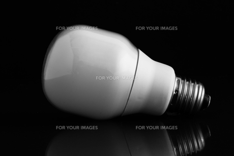 Energy saving bulb laying on its sideの写真素材 [FYI00488297]