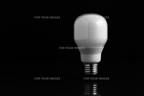 Energy saving bulb standing on black backgroundの写真素材 [FYI00488305]