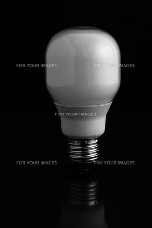 Energy saving light bulb standing on black backgroundの写真素材 [FYI00488323]