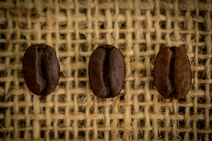 Three coffee beans in a rowの写真素材 [FYI00488344]