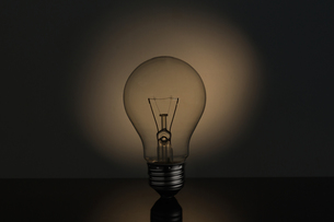 Big light bulb standing in sepia tonesの写真素材 [FYI00488348]
