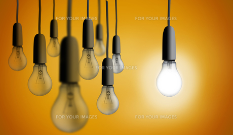 One light bulb lighting upの写真素材 [FYI00488351]