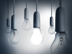 Light bulbs hangingの写真素材 [FYI00488359]