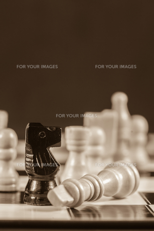 Fallen white chess piece lying next to black knight in sepia toneの写真素材 [FYI00488362]