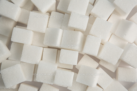 Sugar lumpsの素材 [FYI00488432]
