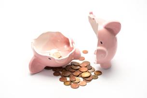 Piggy bank broken with moneyの写真素材 [FYI00488438]