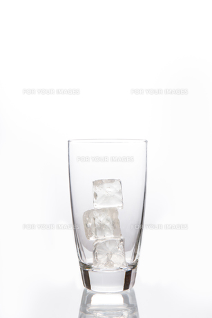 Empty glass with ice cubesの写真素材 [FYI00488450]