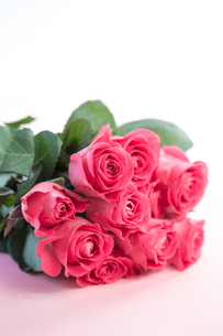 Bouquet of pink rosesの写真素材 [FYI00488484]