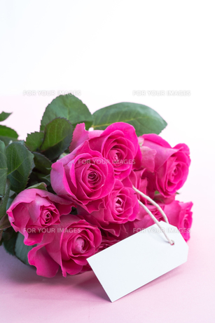 Bouquet of pink roses with an empty card on a tableの写真素材 [FYI00488513]