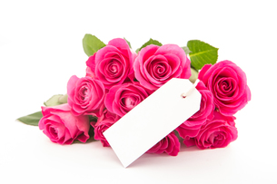 Close up of a beautiful bouquet of pink roses with an empty card on a white backgroundの写真素材 [FYI00488529]