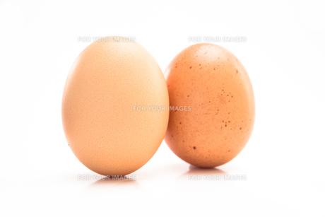 Two eggsの写真素材 [FYI00488557]