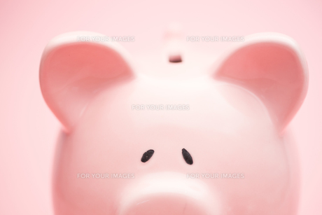 Piggy bankの素材 [FYI00488616]