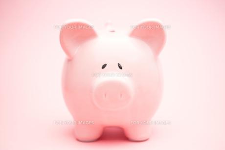 Pink piggy bankの素材 [FYI00488663]