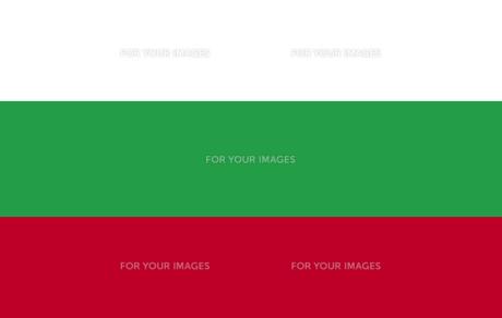 Bulgarian Flagの素材 [FYI00488746]