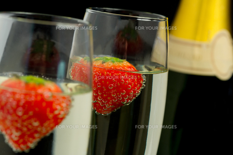 Strawberries floating in two champagne flutesの素材 [FYI00488758]