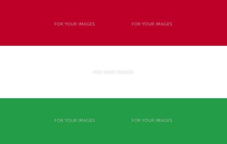 Hungarian Flagの素材 [FYI00488771]