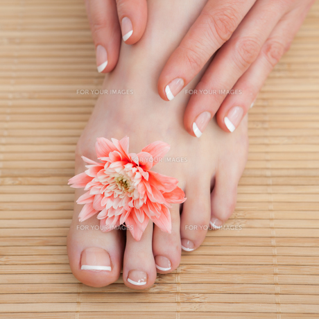French nail treatment at spa centerの写真素材 [FYI00488796]