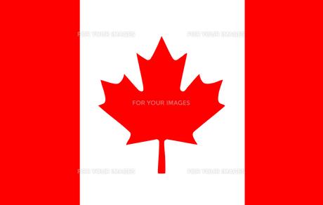 Canadian Flagの素材 [FYI00488853]