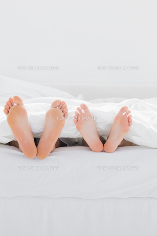Feet of lovers under the duvetの写真素材 [FYI00488858]
