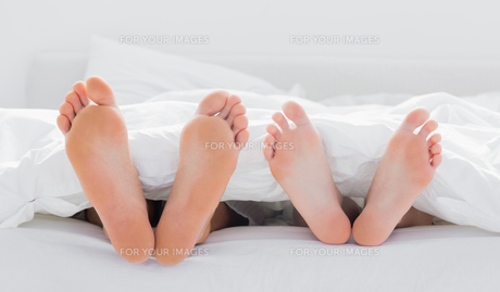 Feet of a couple under the duvetの素材 [FYI00488860]