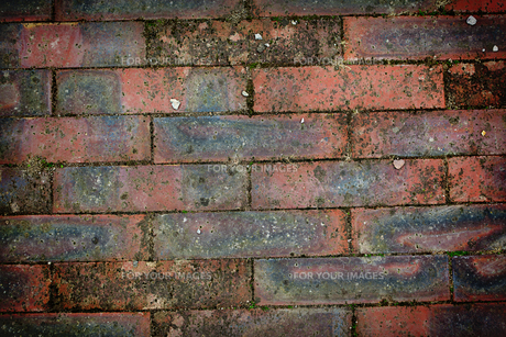 Texture of bricks wallの素材 [FYI00488934]