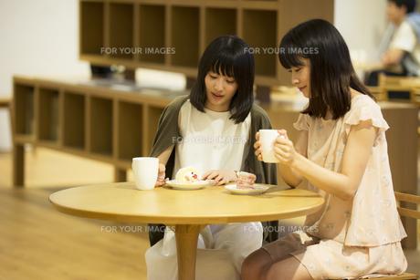 カフェで話す女性の素材 [FYI00491552]