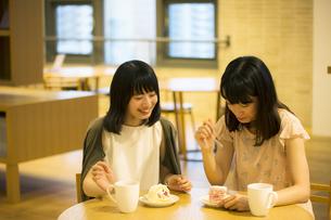 カフェで話す女性の素材 [FYI00491553]