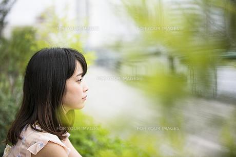 座っている女性の素材 [FYI00491563]