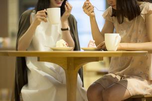 カフェで話す女性の素材 [FYI00491691]