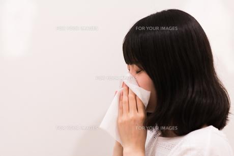 鼻をかむ女性の写真素材 [FYI00491761]