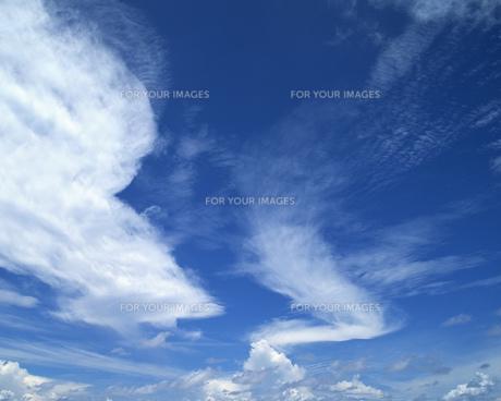 空の写真素材 [FYI00491891]