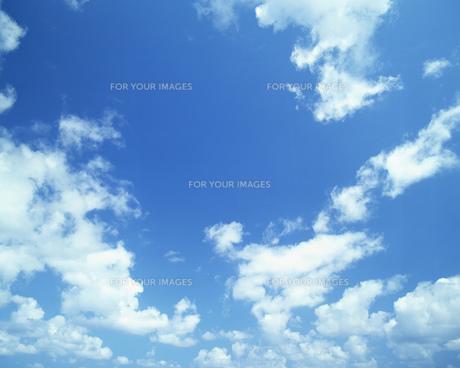 空の写真素材 [FYI00491934]