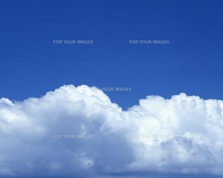 空の写真素材 [FYI00491935]