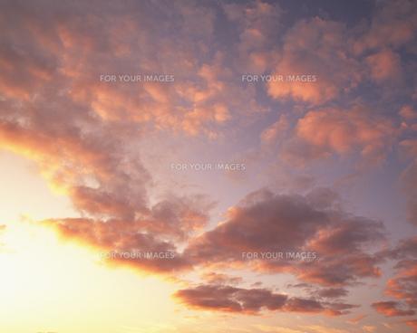 空の写真素材 [FYI00491946]