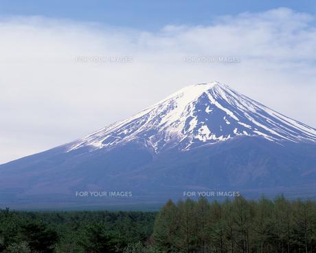 富士山の素材 [FYI00492308]
