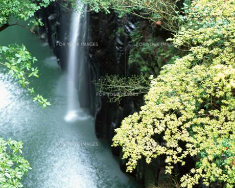 滝の素材 [FYI00492346]