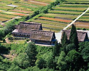 白川郷と田園風景の写真素材 [FYI00492590]