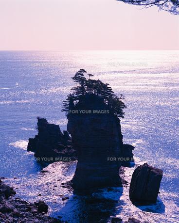 岩礁の素材 [FYI00492628]