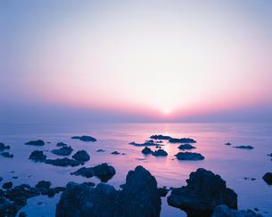 岩礁の素材 [FYI00492629]