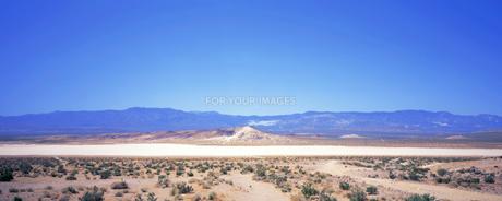 モハーヴェ砂漠の写真素材 [FYI00492817] | ストックフォトの ...