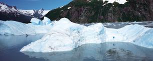 ポルテージ氷河の素材 [FYI00492821]