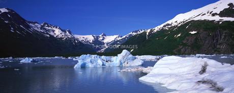 ポルテージ氷河の素材 [FYI00492822]
