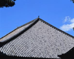 屋根の素材 [FYI00492866]
