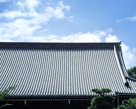 屋根の写真素材 [FYI00492867]