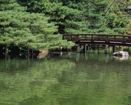 池にかかる橋の素材 [FYI00492890]