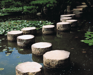飛び石の素材 [FYI00492928]