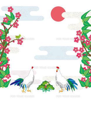 酉年のニワトリと梅の花と鶯の和風縦型年賀状テンプレートの写真素材 [FYI00493012]