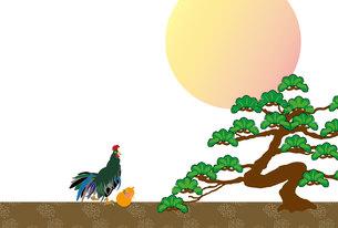 鶏と瓢箪と松の木と日の出のモダンなデザインポストカードの写真素材 [FYI00493034]