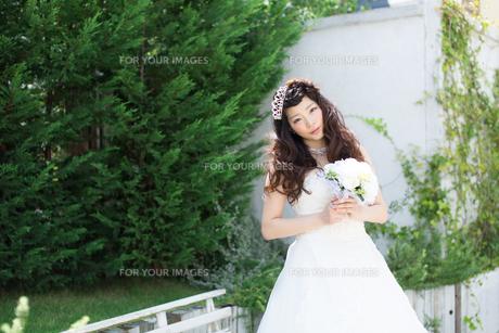 ウエディングドレスの女性の写真素材 [FYI00493961]